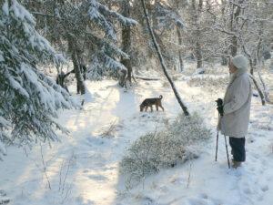 winter walks Sage of Interiors decluttering